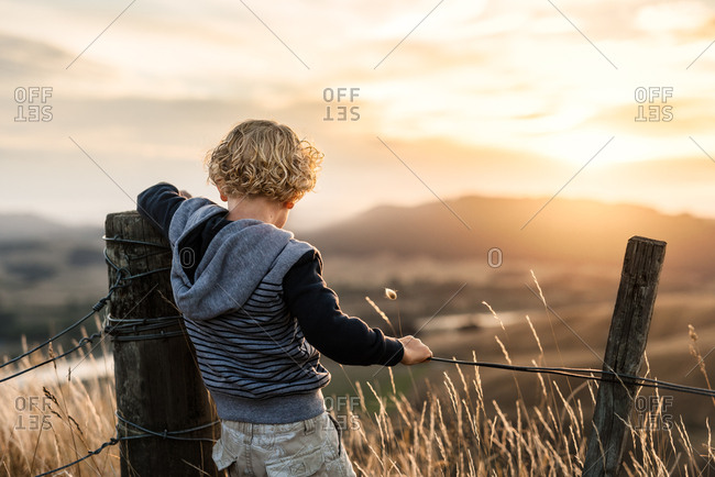 Rear view of little boy looking out at sunset from Hawke's Bay, New Zealand