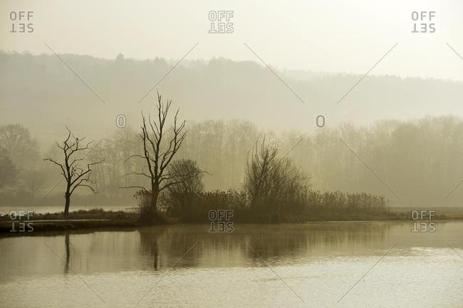 Morning mood in the Naturschutzgebiet Flachsee nature reserve in Rottenschwil, Canton of Aargau, Switzerland, Europe