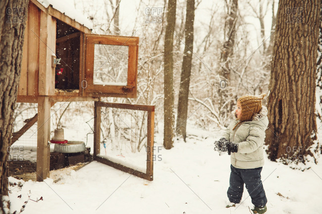 Young boy looking into a snow covered chicken coop