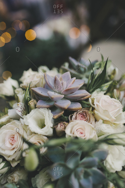 Close up of pretty bouquet with roses and succulents