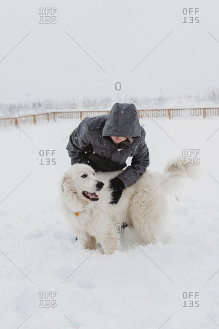 Boy petting dog in the snow