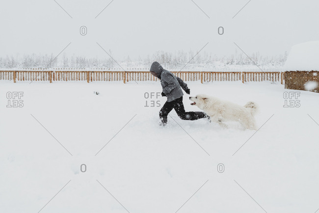 Large white dog chasing boy while playing in the snow