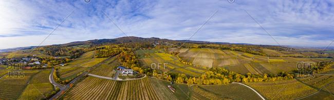 Germany- Hesse- Oestrich-Winkel- Rheingau- Aerial view in autumn