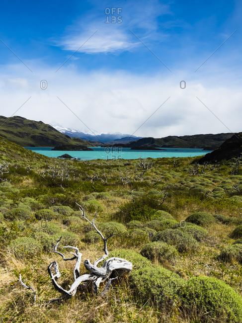 Chile- Patagonia- Torres del Paine National Park- Lago Nordenskjold