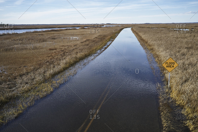 USA- Maryland- Cambridge- High tide flooding from rising sea levels at Blackwater National Wildlife Refuge
