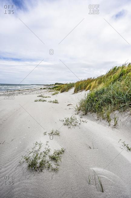 Germany- Mecklenburg-Western Pomerania- Zingst- beach