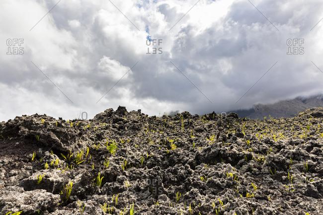 Reunion- Piton de la Fournaise- Grand Brule- Lava field