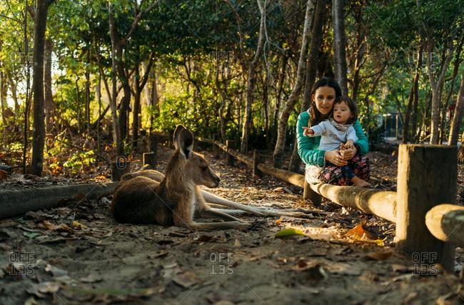 Australia- Queensland- Mackay- Cape Hillsborough National Park- mother and little daughter watching kangaroo