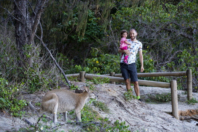 Australia- Queensland- Mackay- Cape Hillsborough National Park- father and daughter with a kangaroo