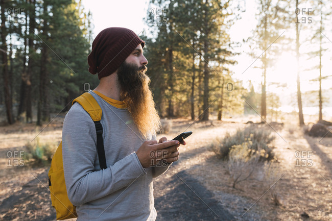 USA- North California- bearded man with cell phone in a forest near Lassen Volcanic National Park