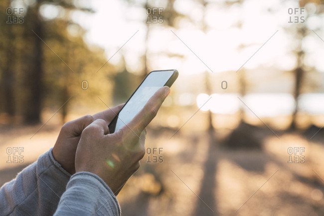 Close-up of man's hands using cell phone in a forest
