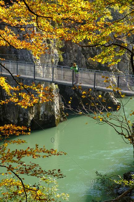 Austria- Tyrol- hiker on suspension bridge looking at Tiroler Ache in autumn