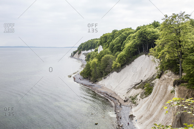 Germany- Mecklenburg-Western Pomerania- Ruegen- Jasmund National Park- chalk cliff