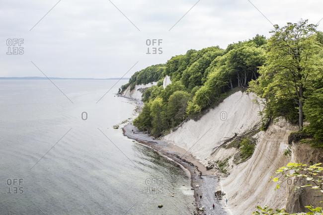 Germany- Mecklenburg-Western Pomerania- Ruegen- Jasmund National Park- chalk cliff