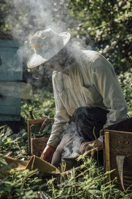 Russland- Beekeeper and smoker- smoke