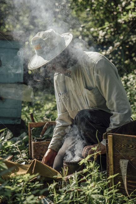 Russland- Beekeeper and smoker- smoke