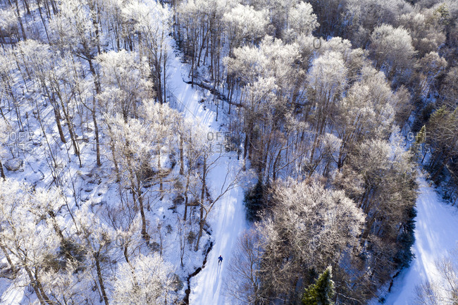 Drone view of a lone cross-country skier skiing through snow covered woods at Prospect Mountain Nordic ski area in Woodford, Vermont.