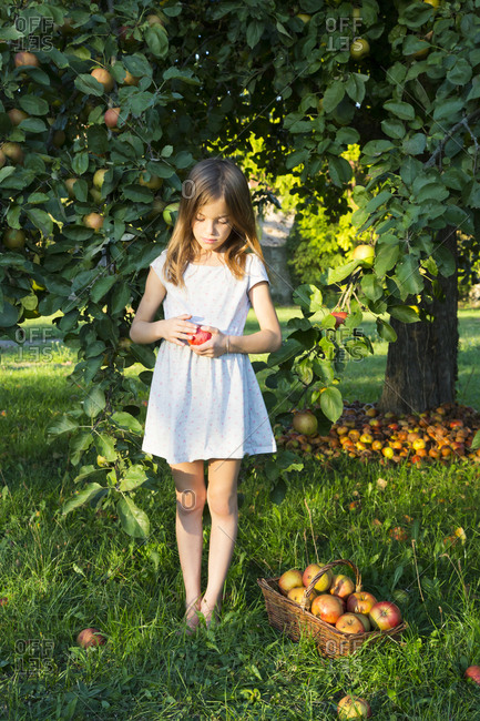 Little girl standing barefoot on a meadow with picked apple in her hands