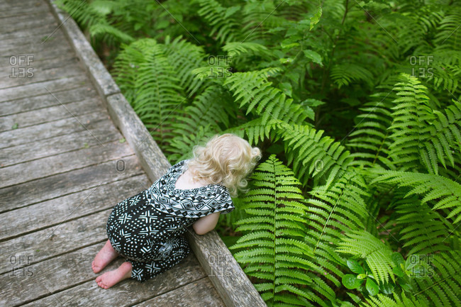 Girl looking down at ferns