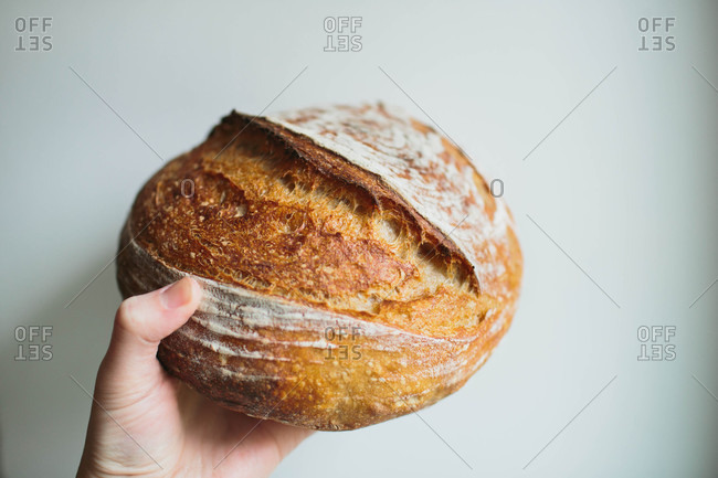 Hand holding sourdough bread