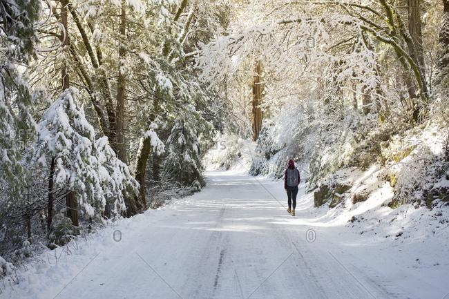 Rear view of woman walking on snowy road