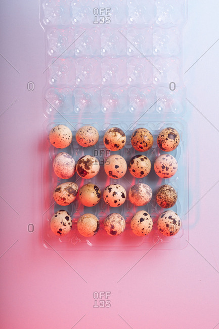 Quail eggs in colorful lighting