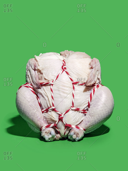 An uncooked Cornish hen tied up with red and white twine against a green background with a strong shadow.