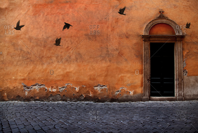 Italy, Florence  wall and door, pigeons flying by in street.