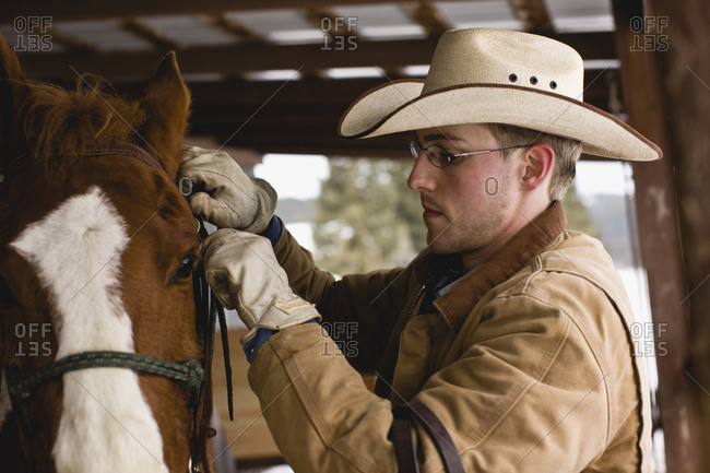 Young man adjusting bridle on horse