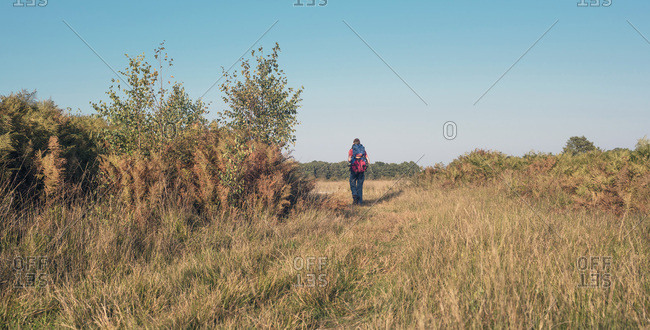 Man backpacking in a field