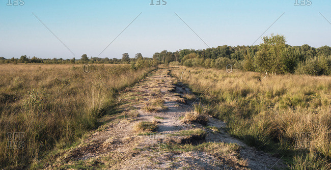Natural path in a field