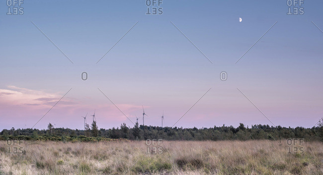 Field and forest at sunset with windmills in the distance