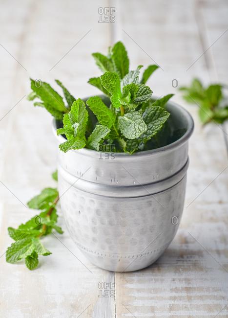 Fresh mint sprigs