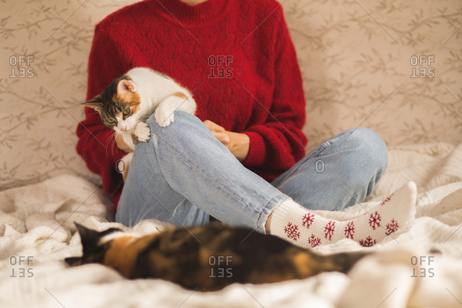 Woman sitting on bed playing with kittens