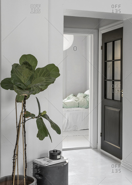 View into a bedroom with plant and door in forground and bedding