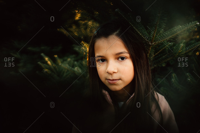 Portrait of a little girl standing in front of a pine tree