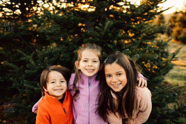 Portrait of a three little kids standing in front of a pine tree