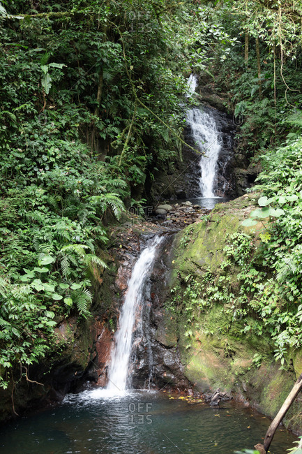 Waterfall in the Monteverde Cloud Forest Biological Preserve in Costa Rica