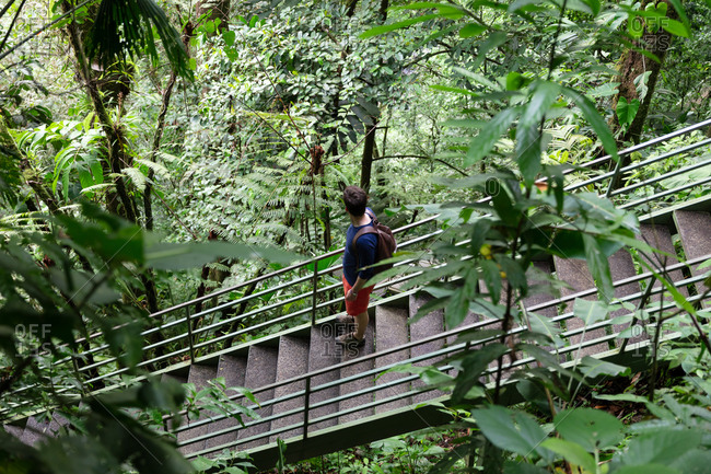 Young man on steps in the jungle in Costa Rica