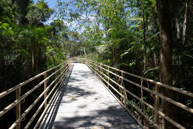 Manuel Antonio National Park, Costa Rica - April 12, 2018: Path leading through jungle