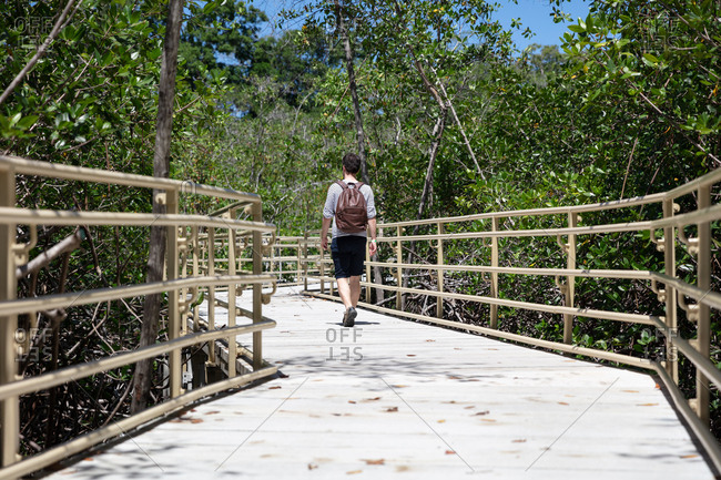 Rear view of man walking on path through Manuel Antonio National Park, Costa Rica