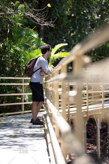Man looking at rainforest on path through Manuel Antonio National Park, Costa Rica