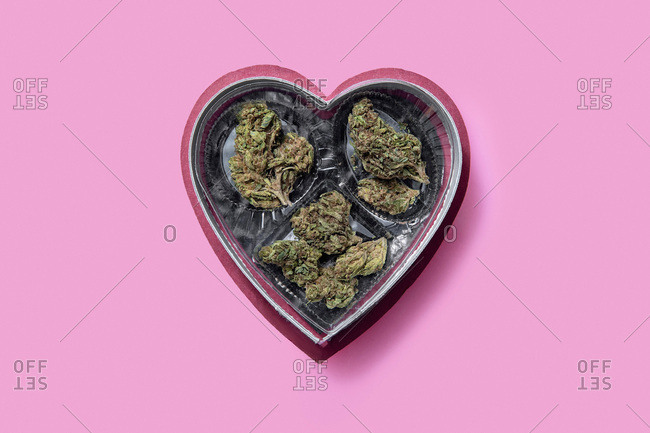 Valentine's Day candy box filled with marijuana on a pink background