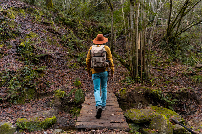 Back view of man with backpack walking on small wooden bridge over small creek while travelling through wet forest in Spain