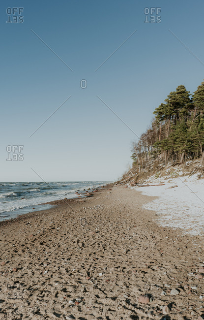 Seashore near green forest in snow