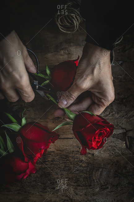 Unrecognizable woman making a bouquet of red roses for Valentine's Day. Love. Flat lay