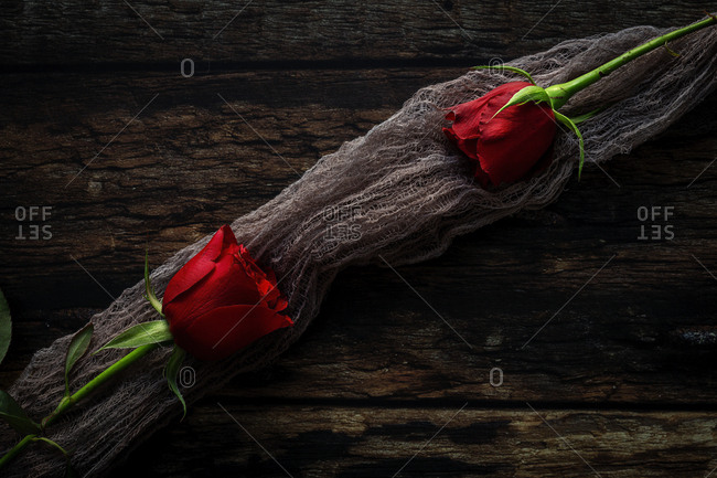 red roses with dark background. Valentine's Day. Love