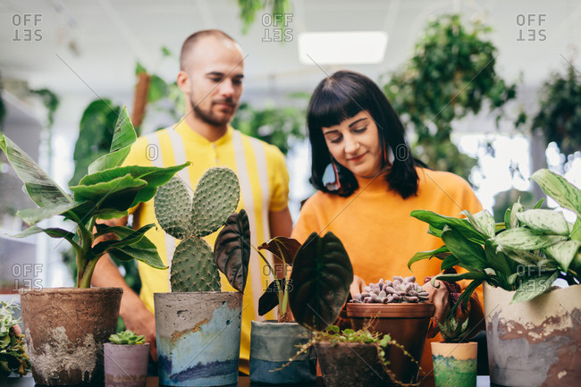 Couple standing in a flower shop, looking at plants. Small joint business, work, occupation.