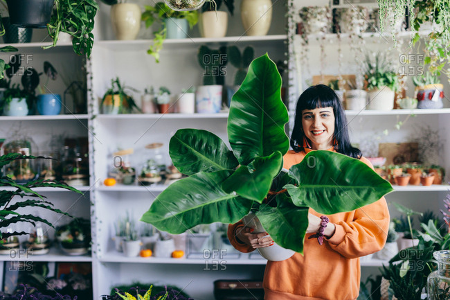 Woman holding big plant in the flower shop. Florist, natural houseplant decoration. Shopping.