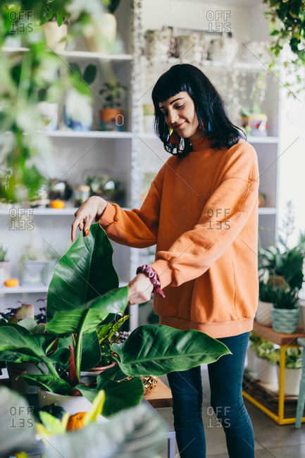 Woman taking care of a plant in a flower shop. Business, work, occupation. Florist.